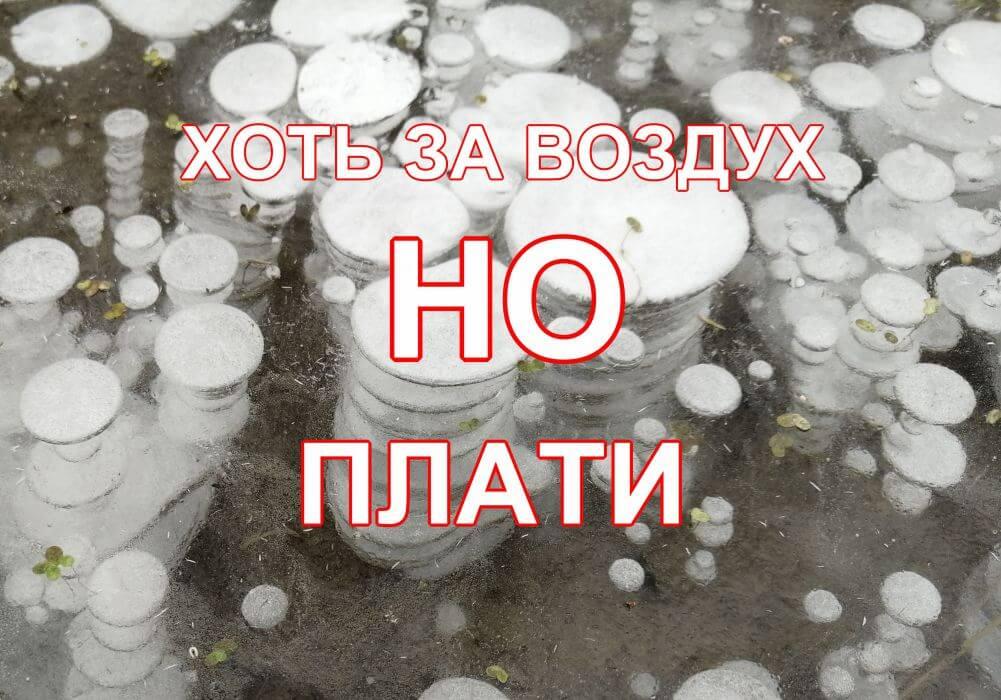 домен в reg.ru