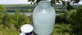 сливки из молока