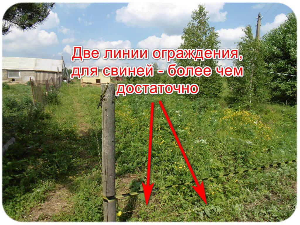 Электронный пастух - монтаж и установка